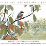 Japan Bird Festival 2014 ワイルドライフアート展