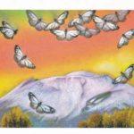 JPAL後援 第1回糠地郷「蝶のはがき絵大賞展」開催のお知らせ